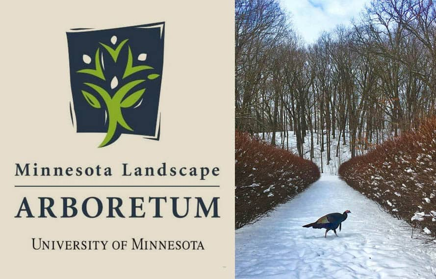 You are currently viewing Minnesota Landscape Arboretum Honor