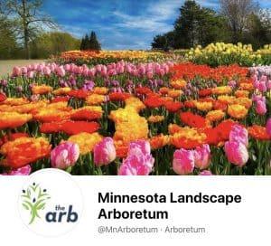 Read more about the article Minnesota Landscape Arboretum Facebook Covers